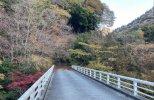 20201114-075635-Exploring-Tanzawa-Yushin-Ohnoyama.jpg