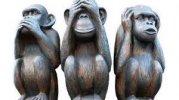 monkeys.jpeg