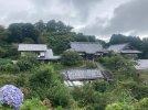 20210821-094530-Exploring-Kamogawa-East.jpg