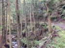 20210827-095632-Exploring-Sano-&-Kiryu.jpg