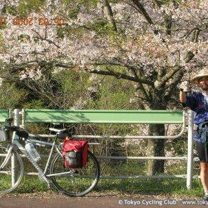 Hanami in May (around Kiso-fukushma) - 5月の花見