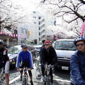 Tour de la Pink