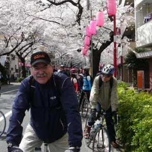 the tour de Pink