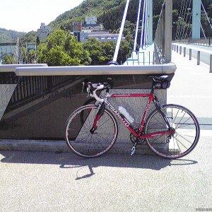 相模湖(勝瀬橋)