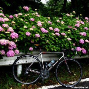 Rainy season cycling