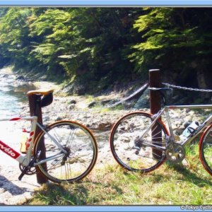 Cervelo and Vlaams by the Houkigawa river, Shiobara Onsen