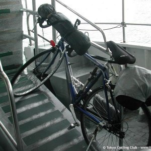 The Horse on the Ferry