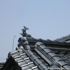A Dolphin on the Roof / しゃちほこ