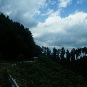 HARAITIBANAGURI-rindo