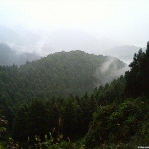 Rain on the Jimba Onsen Rindo