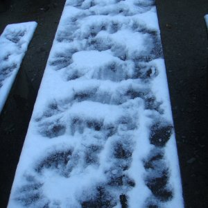 Handprints in the Snow
