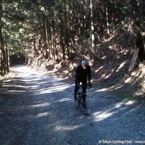SteveT cyclocross style