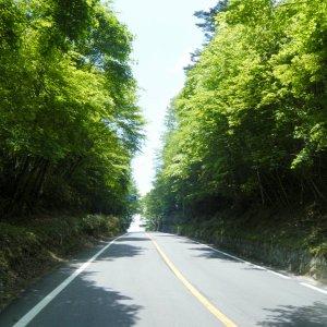 Cresting Yanagisawa-toge