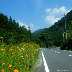 R284 part of Ryusei Hillclimb route