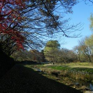 Nogawa-koen cyclocrossing