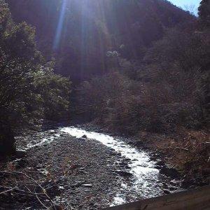 solo sunday - yabitsu