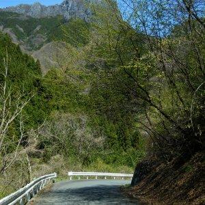 Futakoyama 二子山 ahead....
