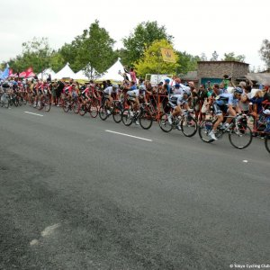 Peloton chases break - ToC Stage 8