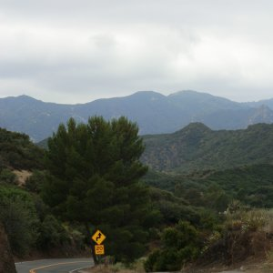 Cold Canyon Rd. in Malibu