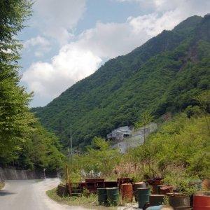 Nicchitsu haikyo, Saitama