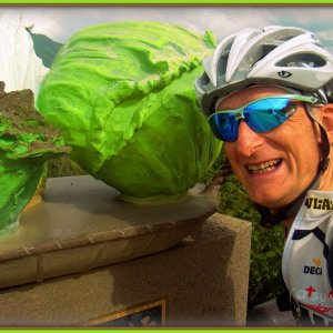 In Kawakami-mura cabbages grow bigger than your head
