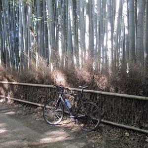 Arashiyama – bike